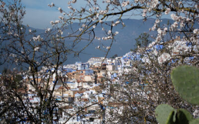 Dial Up Your Sensory Sensitivity 6/6: Chefchaouen – Tasting the Luscious Creaminess of the Jben Cheese