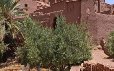 The Eco-Aspects of Traditional Moroccan Accommodation